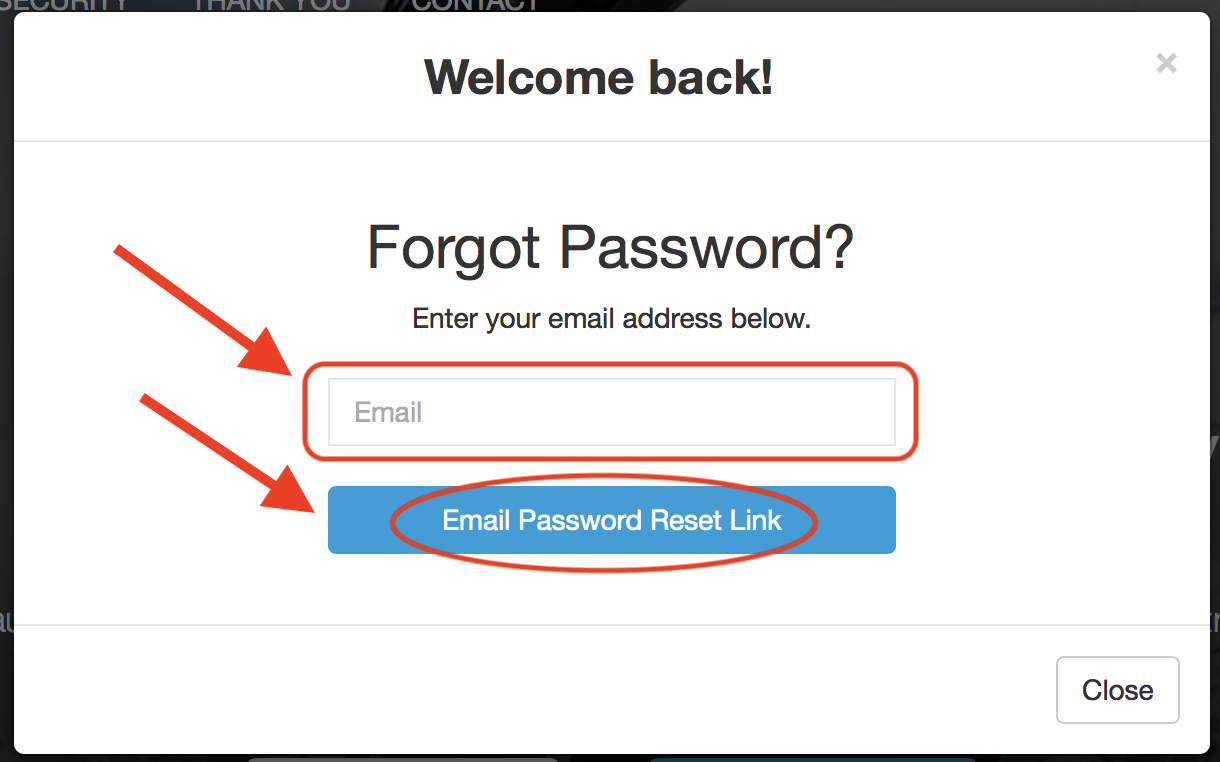 Email password reset button screenshot