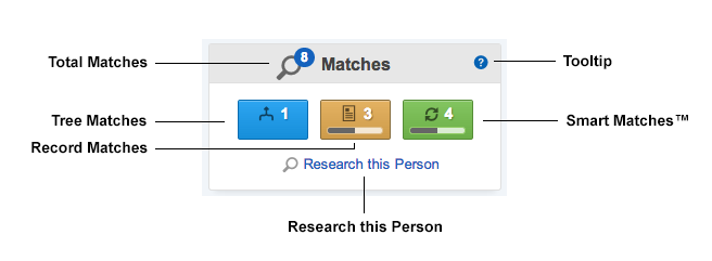 matches_module_diagram.png